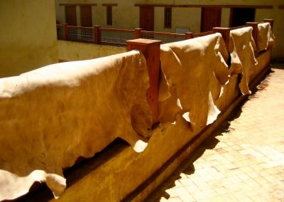 Hides drying out at Chaouara Tannery in Fes in Morocco