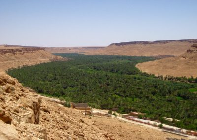 Oasis in the Ziz Valley in Morocco