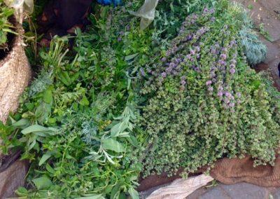 Herbs in the Marrakech souk