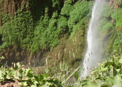 Lush green walls of Ouzoud Waterfalls