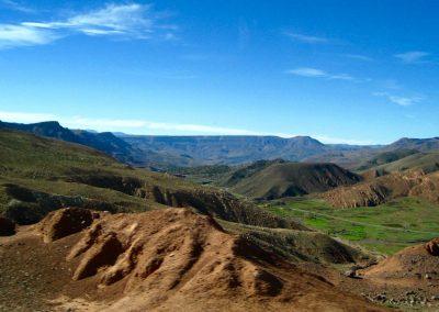 Verdant scenery on the drive