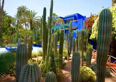 Majorelle Garden in Marrakech in Morocco