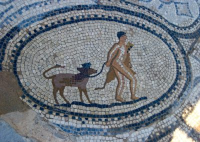 Mosaic at Volubilis archeological site in Morocco