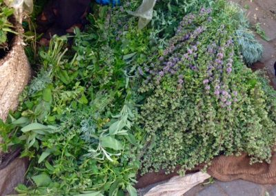 Herbs in the Marrakech souk