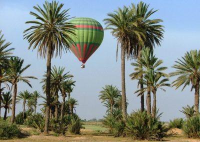 Hot air balloon landing amongst the palms near Marrakech